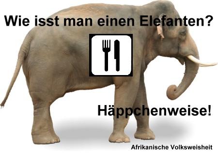 elefant_essen.jpg